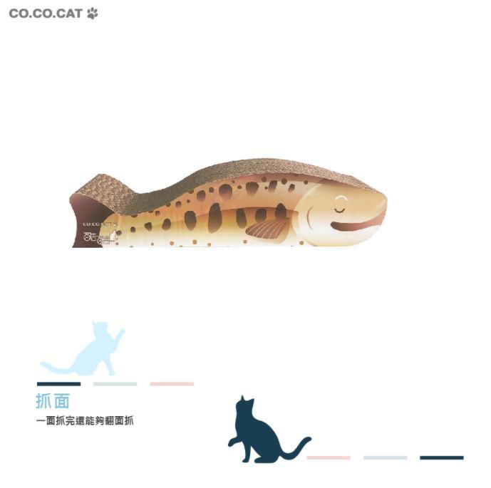 櫻花鉤吻鮭002.JPG